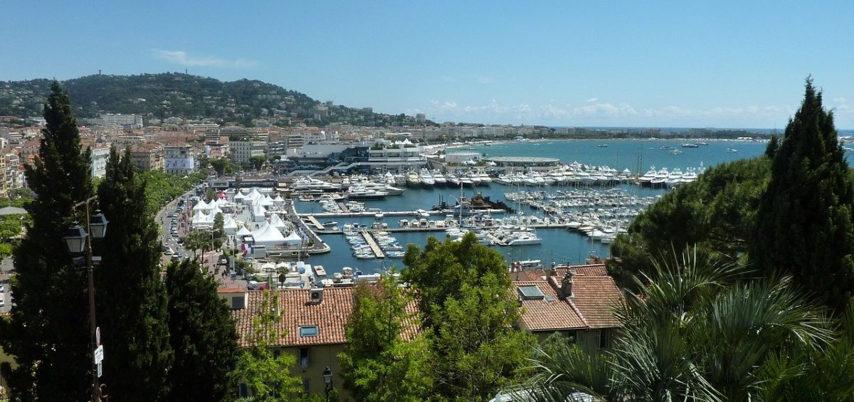 cannes guide |