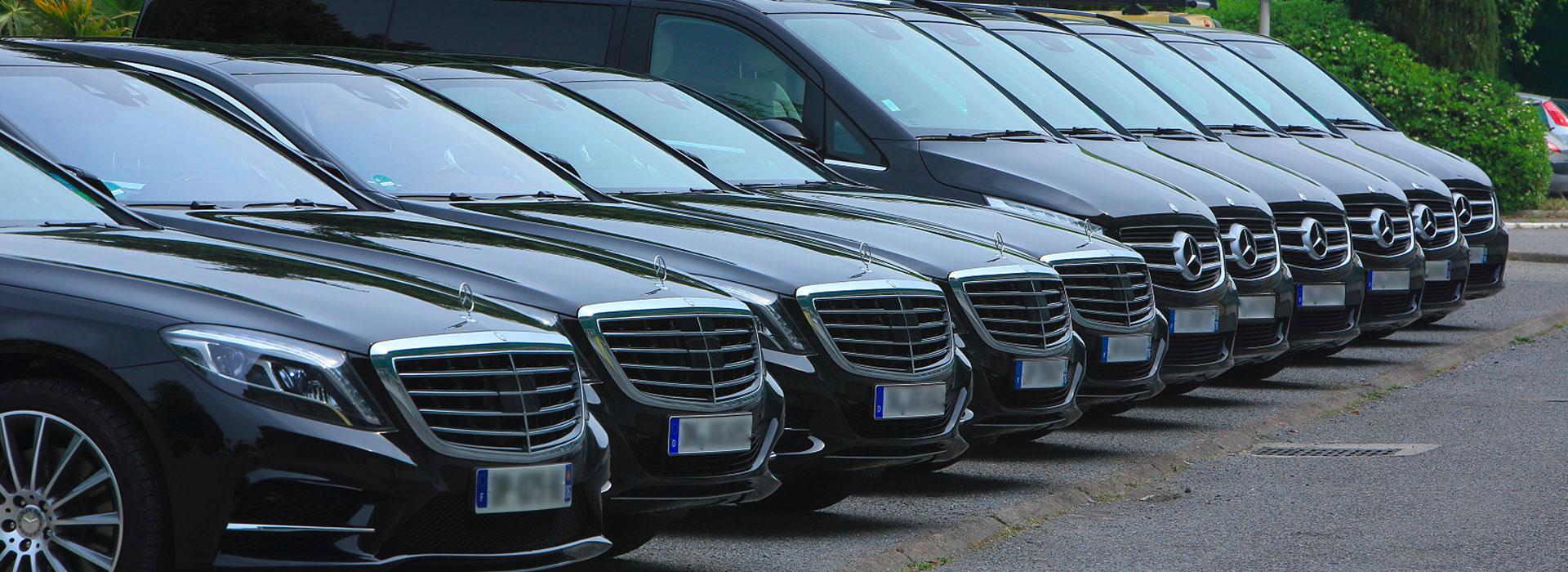 flotte kingdom limousines Nice 1  